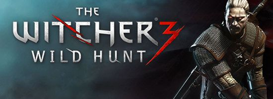 The Witcher 3 Wild Hunt Banner