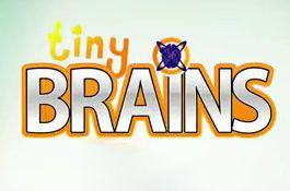 PS4 Gewinnspiel-Marathon No.1 – 5x Tiny Brains für PS4 gewinnen!